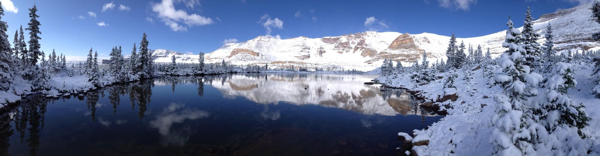 Alpine Holistic Medicine